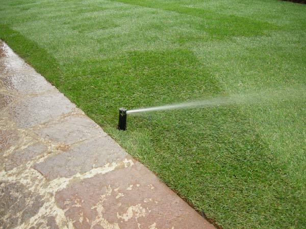 Impianto-irrigazione-a-goccia-giardino-Cesena