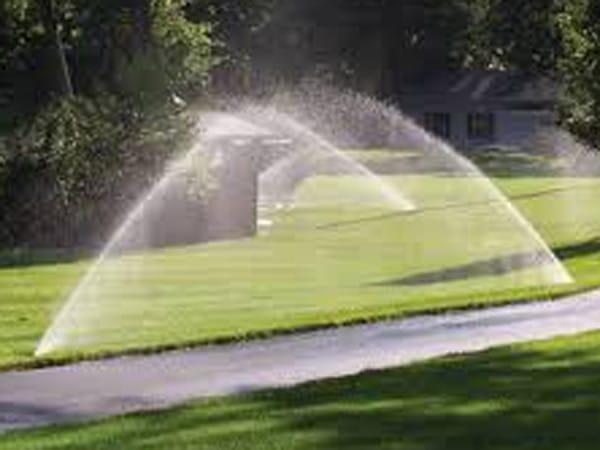 Irrigazione-a-goccia-orto-Senigallia